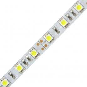 P.5050.60.1280  Strisce Led SMD 5050 60 Led/m - 4400 lumen 12V - CRI80  Power-Supply  Strisce di LED